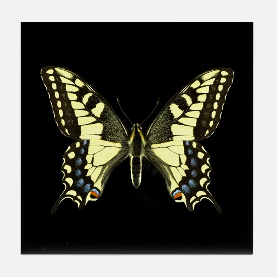 Oregon's Swallowtail Butterfly Tile Coaster