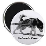 Malamute Power Magnet