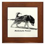 Malamute Power Framed Tile
