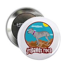 Tripawds Rock - Lottie 2.25