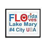 Florida Framed Panel Print