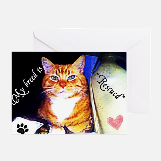 Former Stray Greeting Card