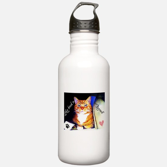 Former Stray Water Bottle