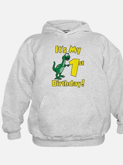 Dinosaur 1st Birthday Hoodie