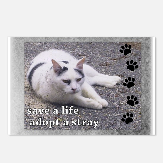 Adopt a Stray Postcards (Package of 8)