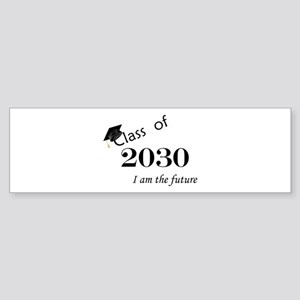 Born in 2012/Class of 2030 Sticker (Bumper)