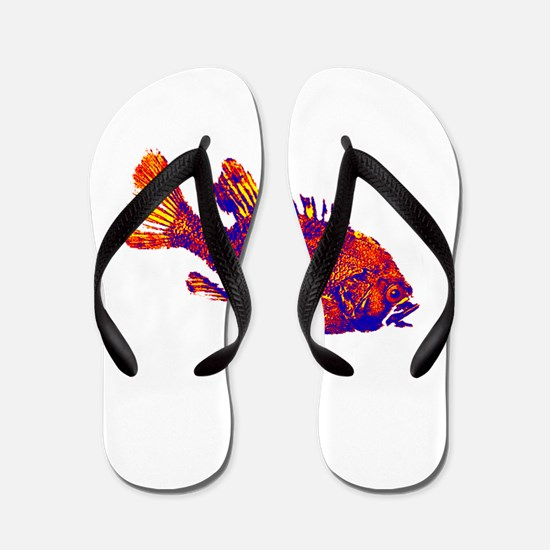 IN THE SHALLOWS Flip Flops