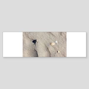Ocracoke Island shell. Bumper Sticker
