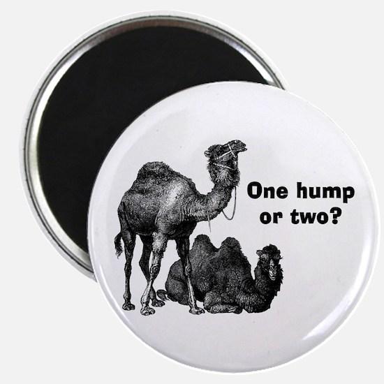 Funny Camels Magnet
