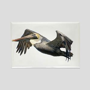 Pelican Flying Rectangle Magnet