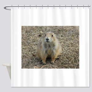 Prarie Dog Town Shower Curtain