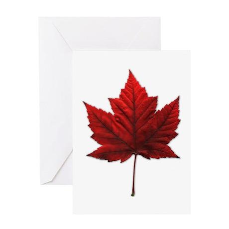 Canada Maple Leaf Souvenir Greeting Card