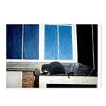 Amsterdam Cat Postcards (Package of 8)