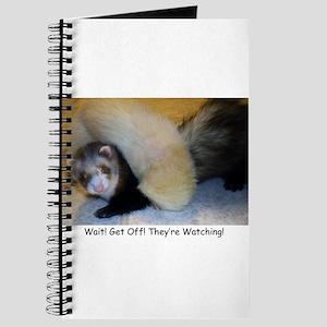 Ferrets4Pets Journal