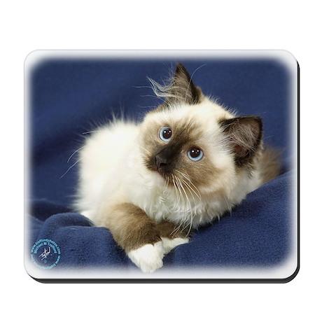 Ragdoll Cat 9W082D-011 Mousepad