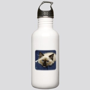 Ragdoll Cat 9W082D-020 Stainless Water Bottle 1.0L