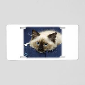 Ragdoll Cat 9W082D-020 Aluminum License Plate