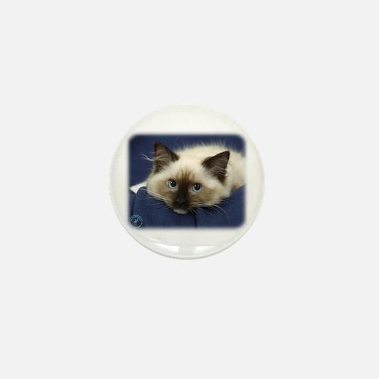 Ragdoll Cat 9W082D-020 Mini Button