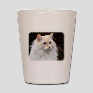 Ragdoll Cat 9W082D-020 Shot Glass