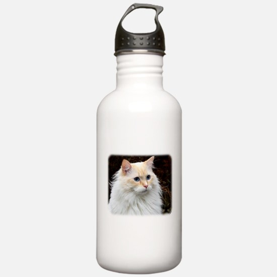 Ragdoll Cat 9W082D-020 Sports Water Bottle