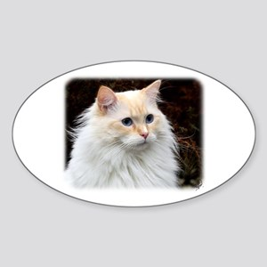 Ragdoll Cat 9W082D-020 Sticker (Oval)