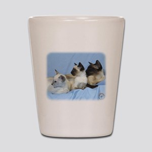 Siamese Cat 9W055D-074 Shot Glass