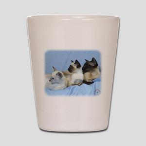 Siamese Cat 9W055D-074 Shot Glass