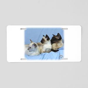 Siamese Cat 9W055D-074 Aluminum License Plate