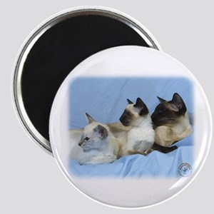 Siamese Cat 9W055D-074 Magnet