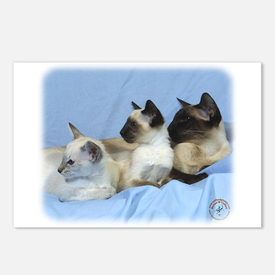 Siamese Cat 9W055D-074 Postcards (Package of 8)