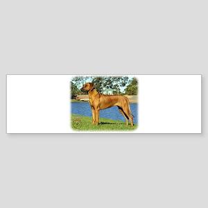 Rhodesian Ridgeback 9P017D-287 Sticker (Bumper)