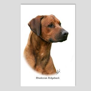 Rhodesian Ridgeback 9Y338D-044 Postcards (Package
