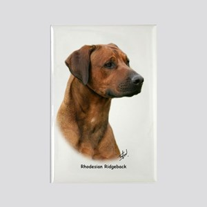 Rhodesian Ridgeback 9Y338D-044 Rectangle Magnet