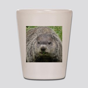 Groundhog Eating Shot Glass