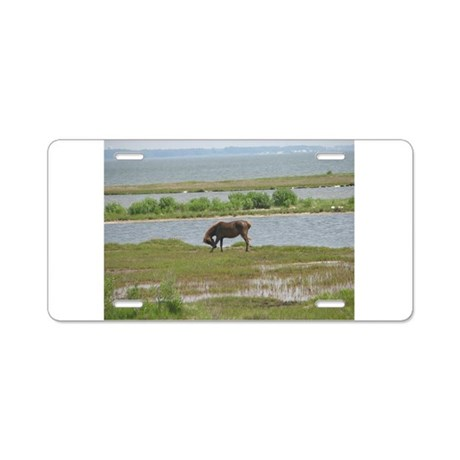 Wild Pony Aluminum License Plate