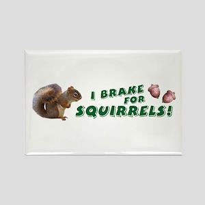 """""""I Brake for Squirrels"""" Rectangle Magnet"""