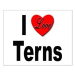 I Love Terns Small Poster