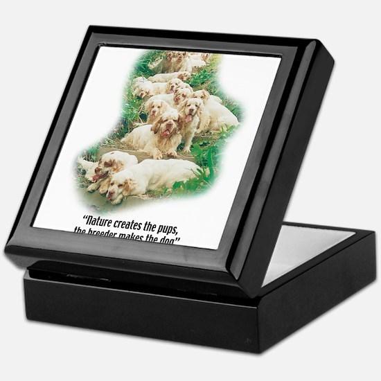 Unique Spaniel Keepsake Box