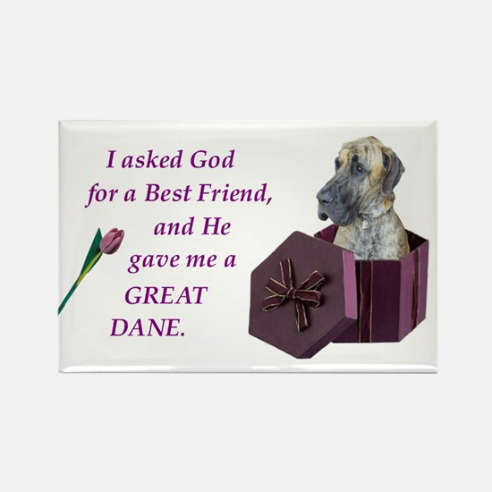 Great Dane Rectangle Magnet (Brindle)