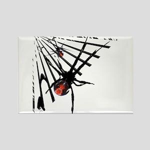 Redback Spider in Web Rectangle Magnet