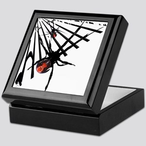 Redback Spider in Web Keepsake Box