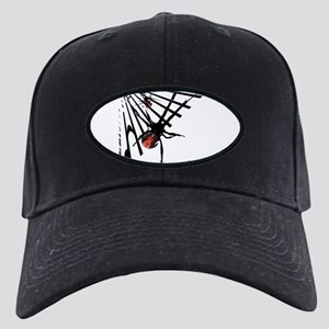 Redback Spider in Web Black Cap