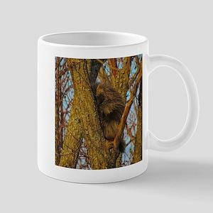 sleeping porcupine Mugs