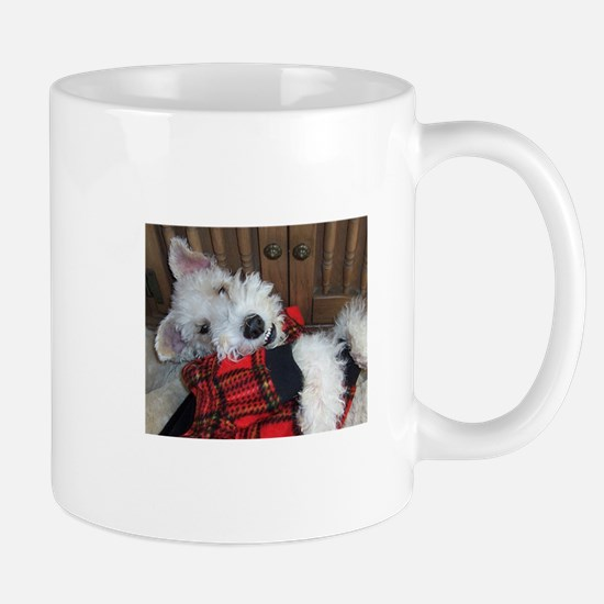 Cute Go fox Mug