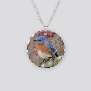 Eastern Bluebird Necklace Circle Charm