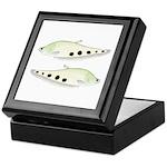 Clown Featherback Knifefish Keepsake Box