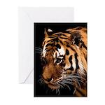 Bengal Tiger Greeting Cards (Pk of 10)