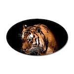 Bengal Tiger 38.5 x 24.5 Oval Wall Peel