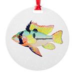 Ram Butterfly Cichlid Ornament