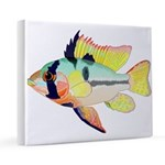 Ram Butterfly Cichlid 16x20 Canvas Print